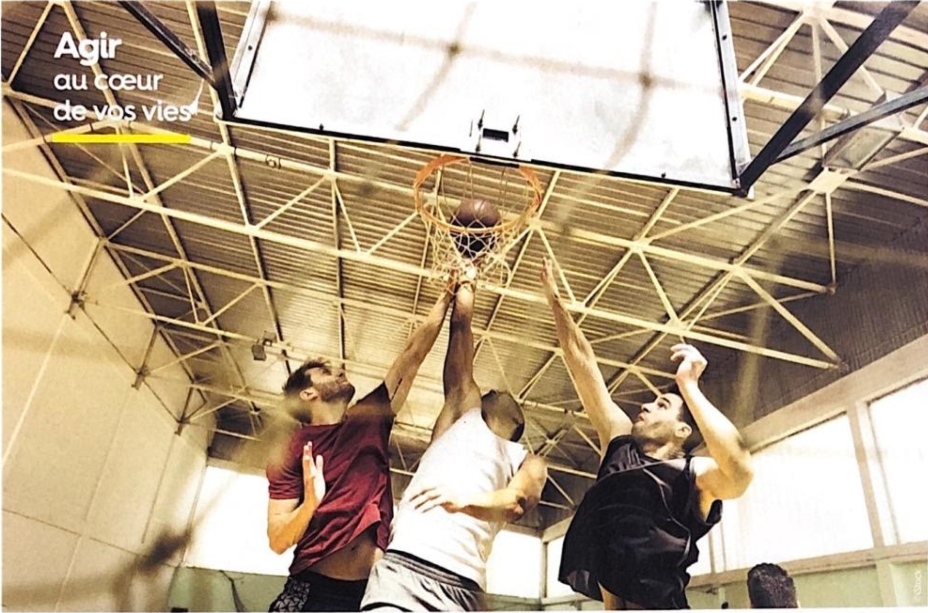 basket-center-article